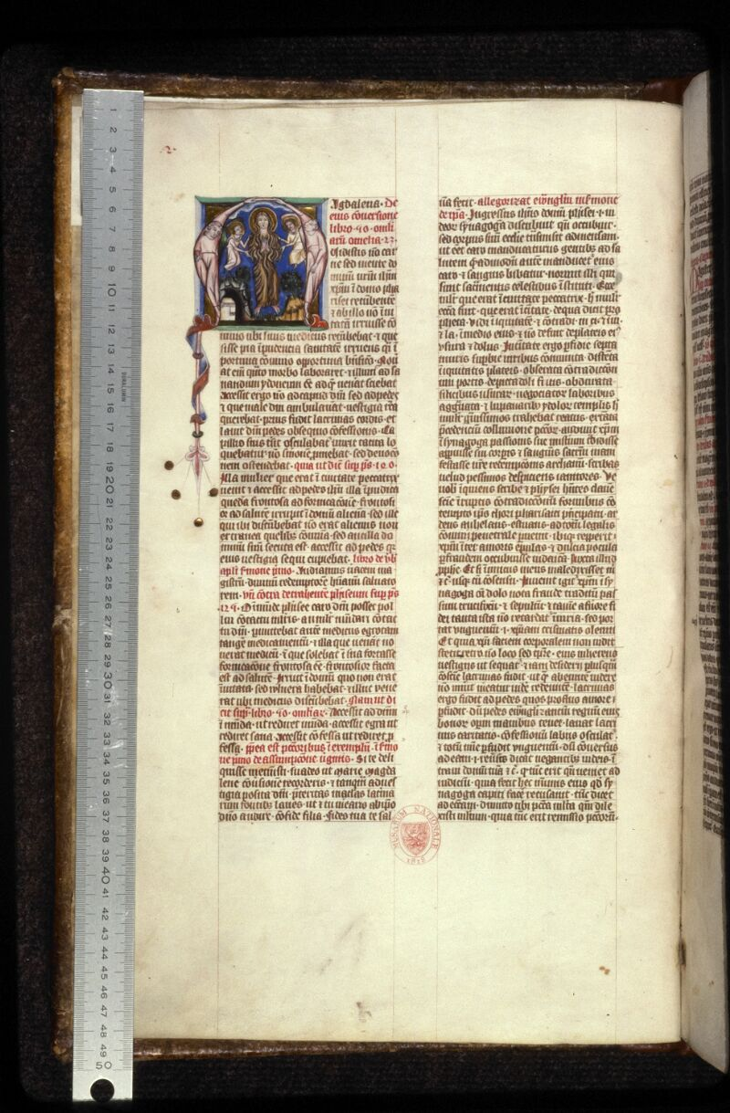 Prague, Musée nat., Bibl., XII. A. 03, f. 002v - vue 1