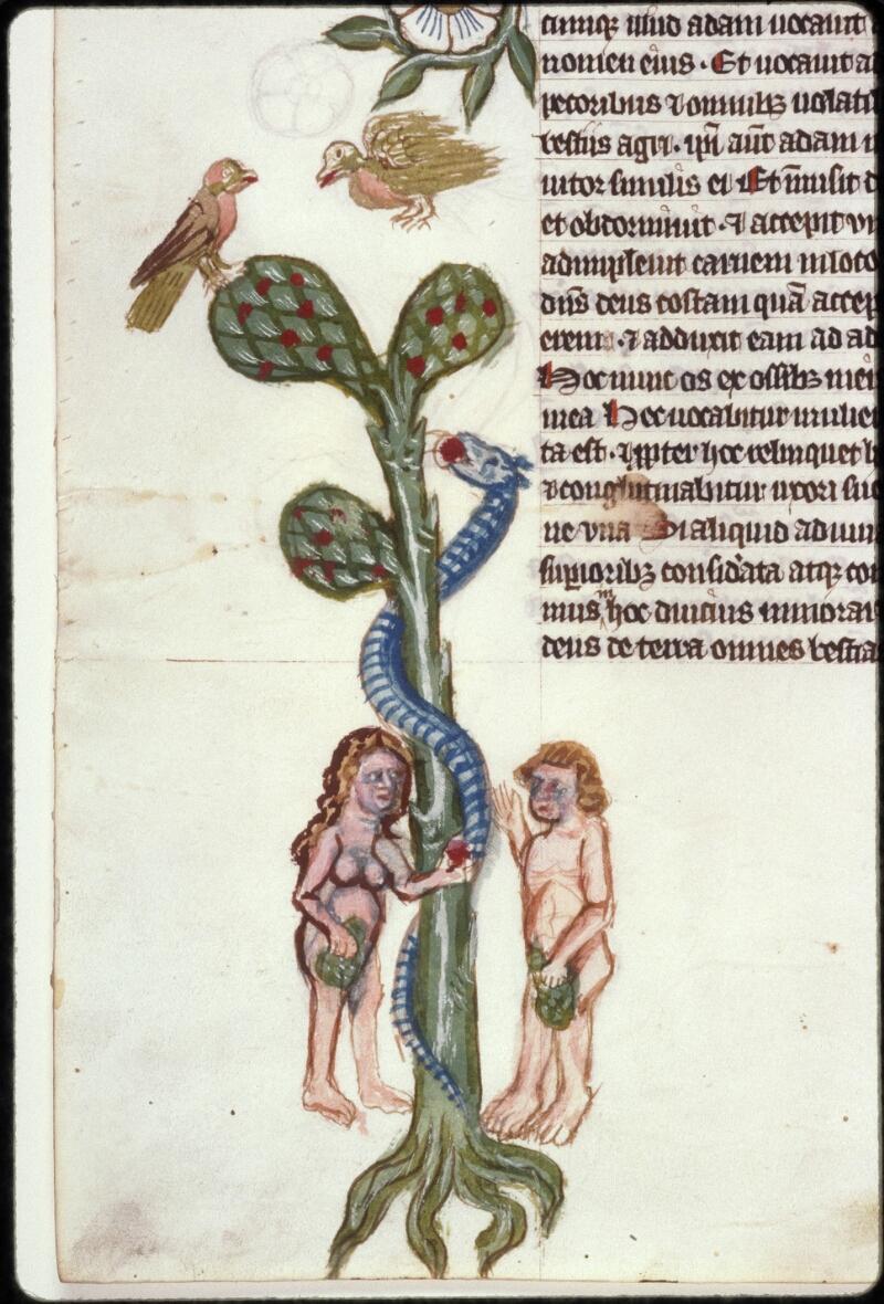 Prague, Musée nat., Bibl., XII. A. 04, f. 044v - vue 2