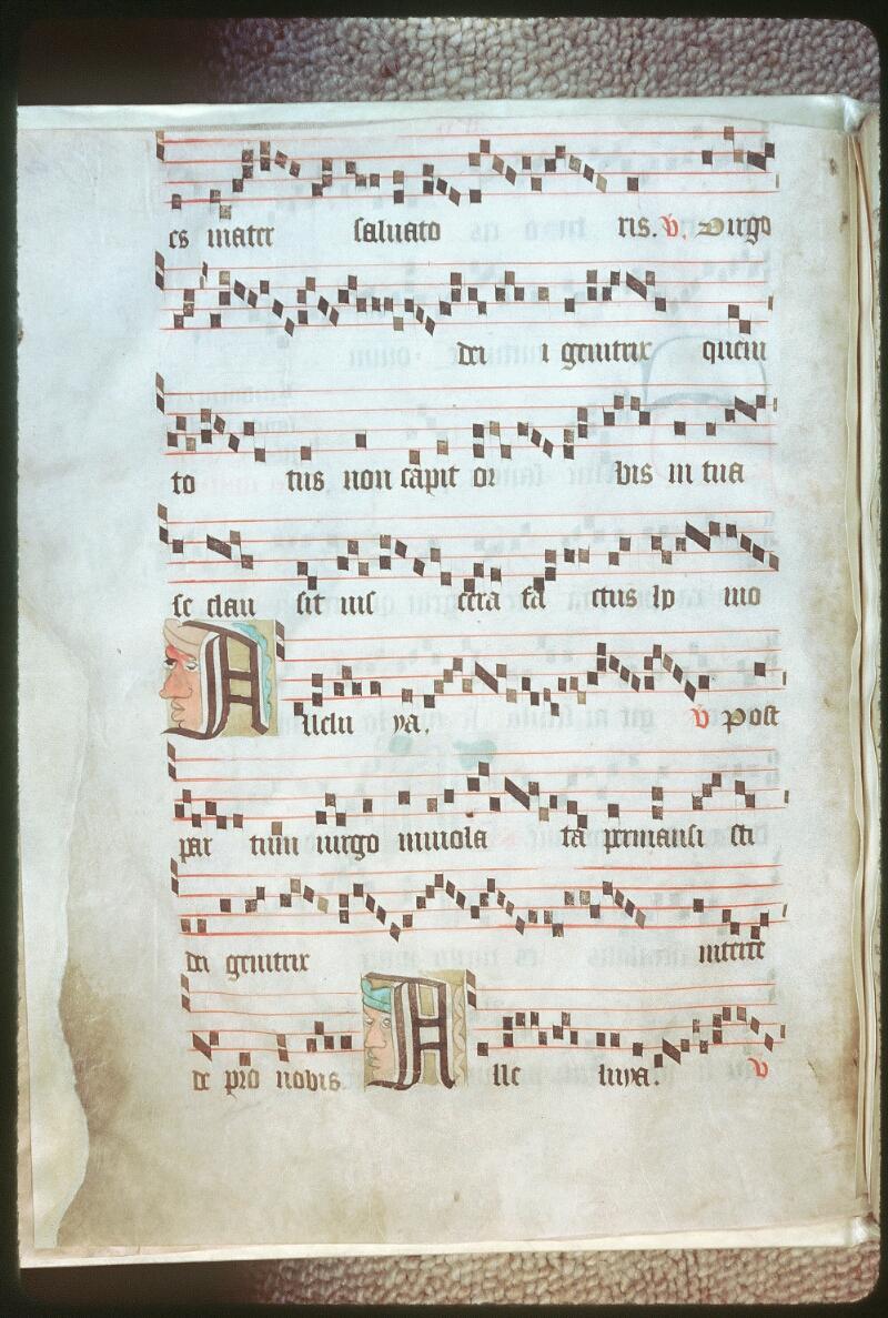 Tours, Bibl. mun., ms. 0261, f. bv