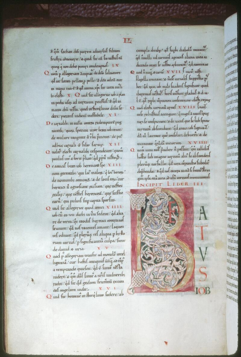 Tours, Bibl. mun., ms. 0318, f. 041v - vue 1
