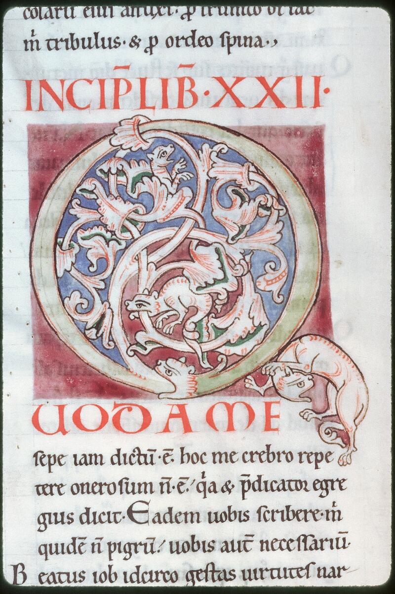 Tours, Bibl. mun., ms. 0319, f. 172v - vue 2