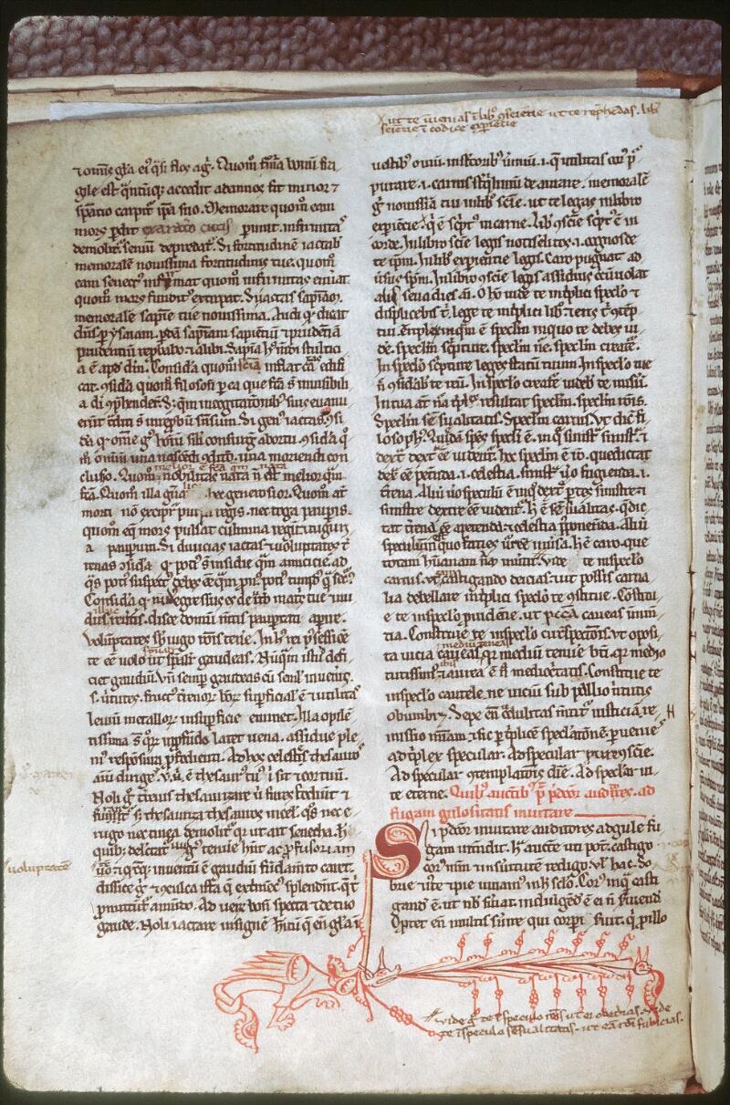 Tours, Bibl. mun., ms. 0463, f. 002v - vue 1