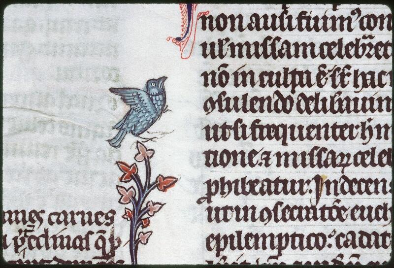 Tours, Bibl. mun., ms. 0558, f. 155v - vue 3
