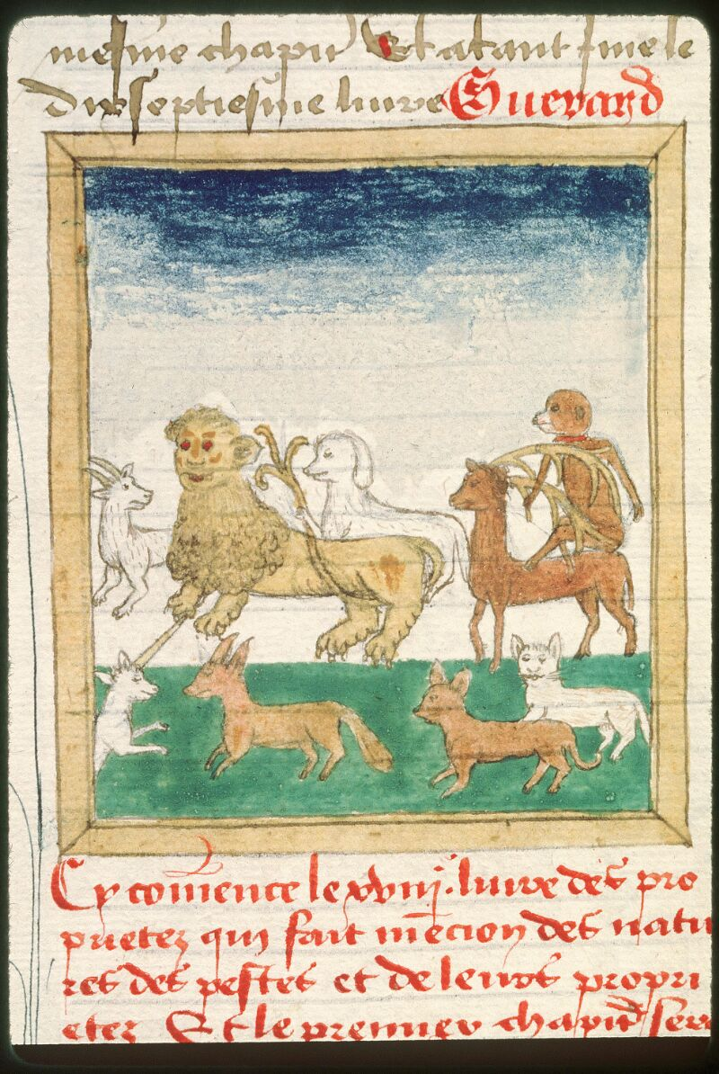 Tours, Bibl. mun., ms. 0703, f. 363v