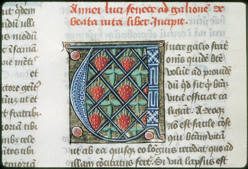 Tours, Bibl. mun., ms. 0693, f. 304v