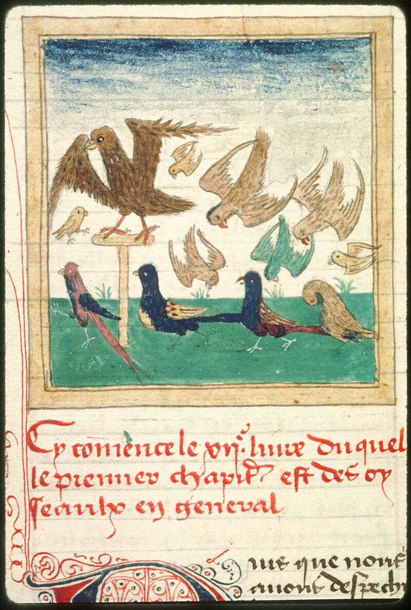 Tours, Bibl. mun., ms. 0703, f. 201v