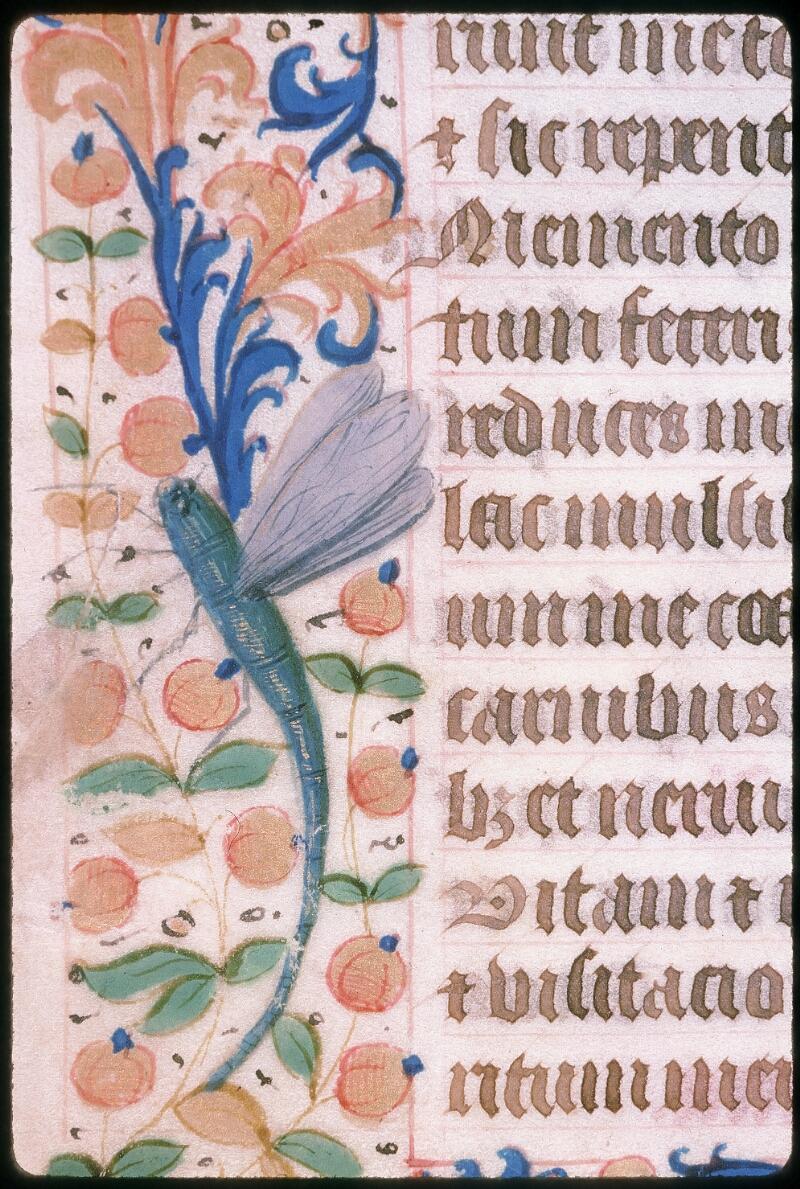 Tours, Bibl. mun., ms. 2273 A, f. 026v - vue 2