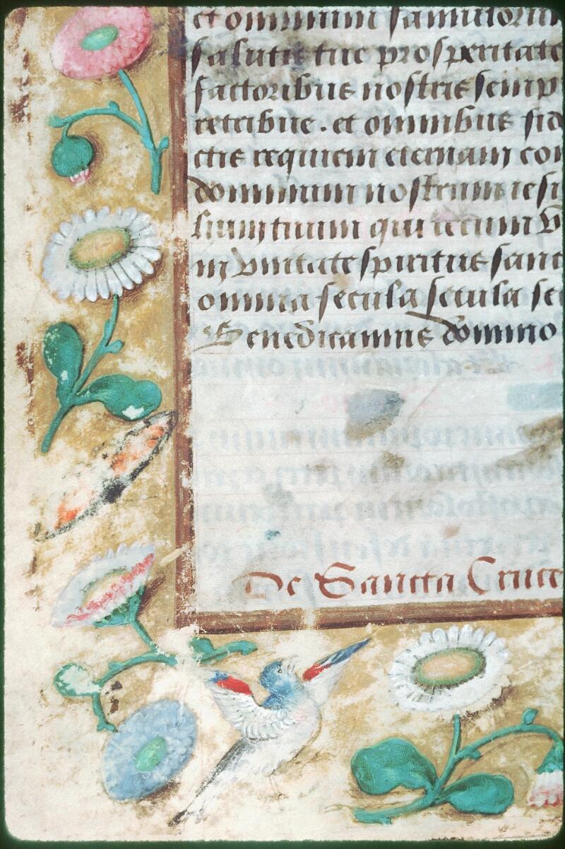 Tours, Bibl. mun., ms. Diocèse 05, f. 019v