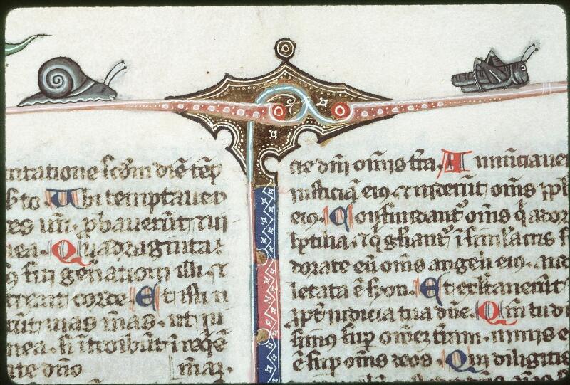 Tours, Bibl. mun., ms. 0008, f. 249 - vue 2
